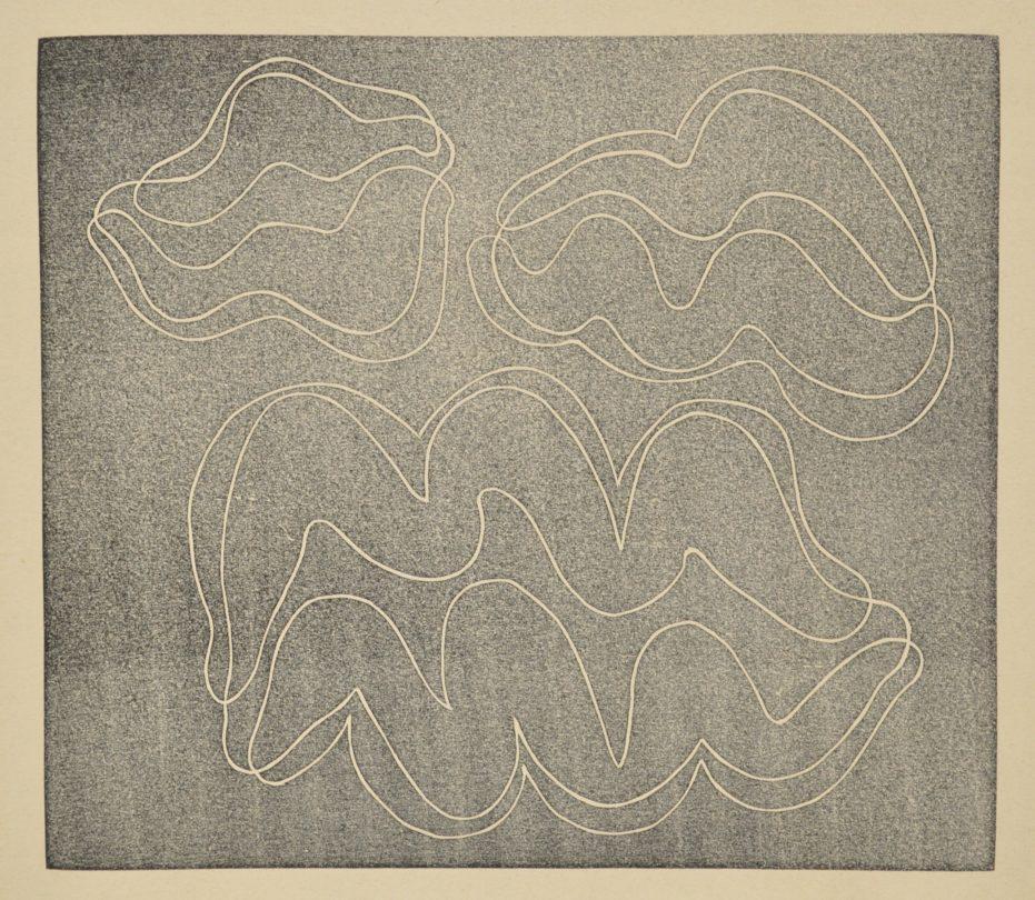 Josef Albers, Adapted